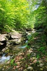 Rock Run cascades