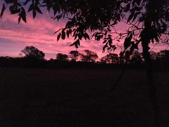 RRPJ-Sunrise BOTTOM-17Oct25