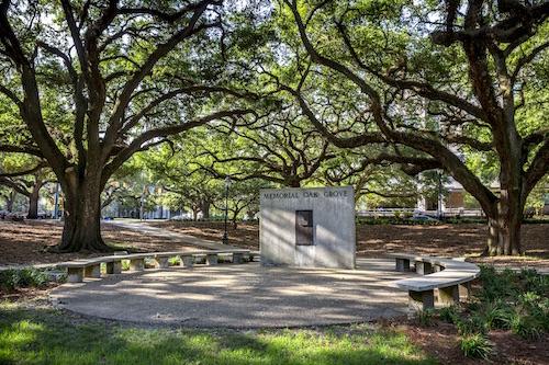 RRPJ-LSU Memorial Oak Grove-18Nov9