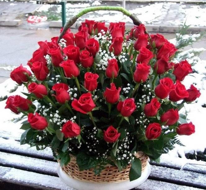 Korpa 101 ruža 11