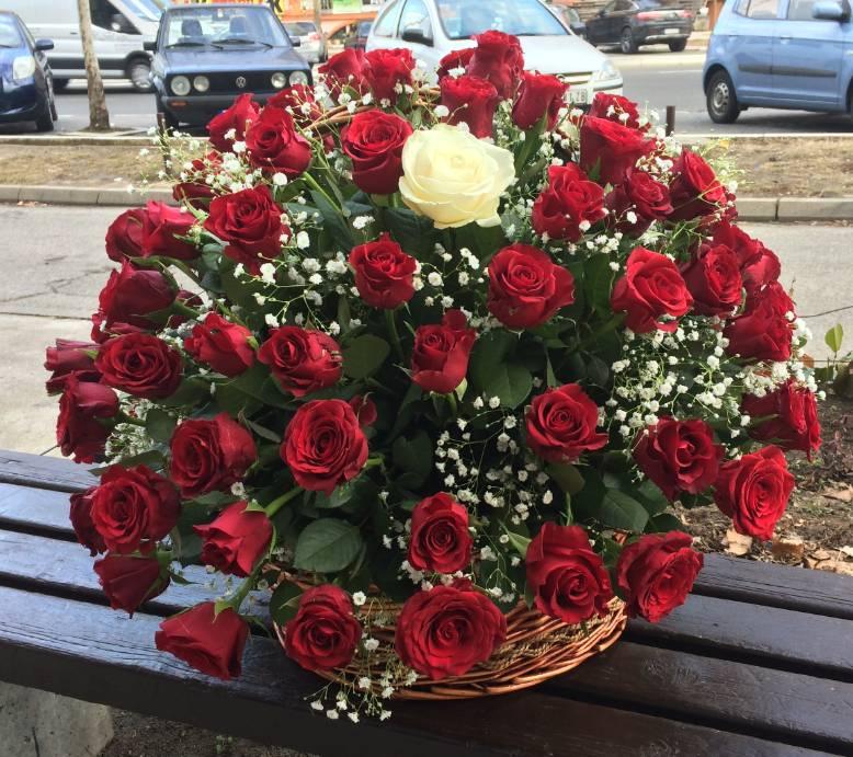 Korpa 101 ruža 16