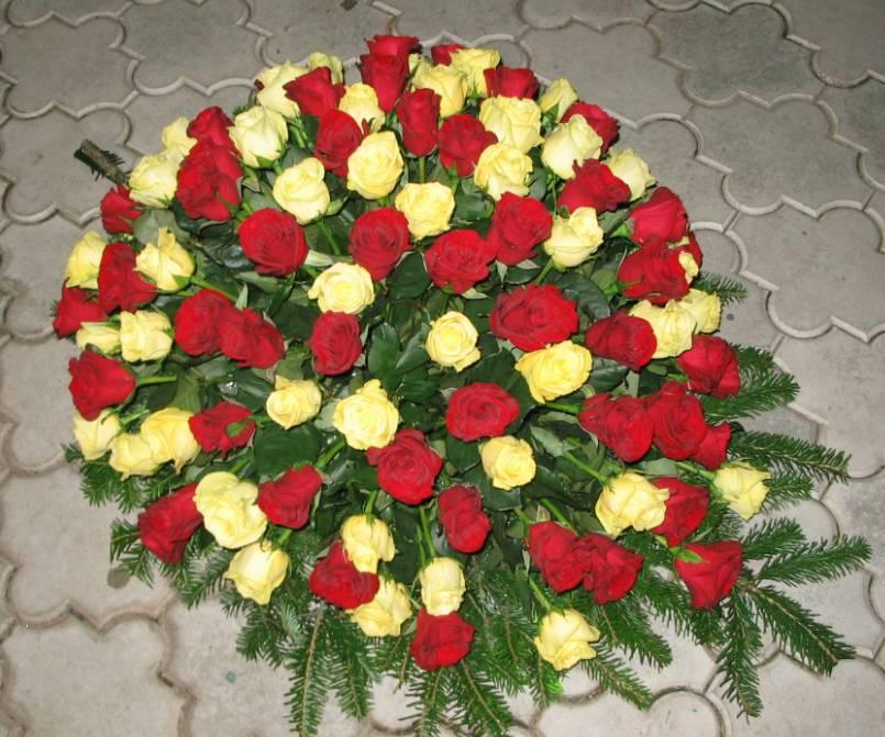 Sahrane 22
