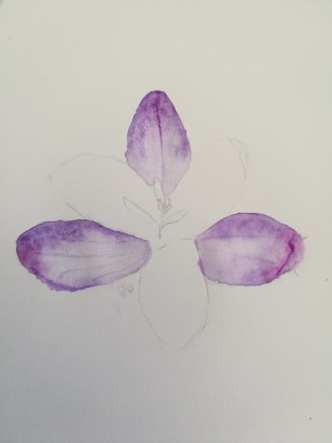 letting the alternating petals dry
