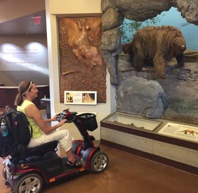 Sloth exhibit at Kartchner Caverns State Park