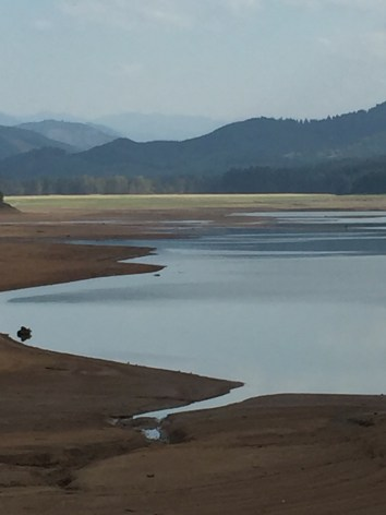 Dorena Lake