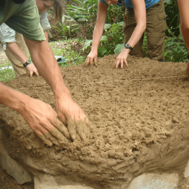 bioconstruccion red de guardianes de semillas ecuador permacultura agroecologia organico
