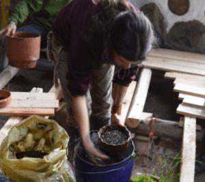 cascajo cultivo en macetas - RGS - permacultura - agroecología