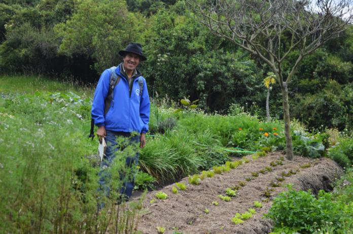 huerta Atuk Pifo Red de Guardianes de Semillas Ecuador permacultura