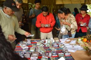 semillas orgánicas ecuador venta de semillas
