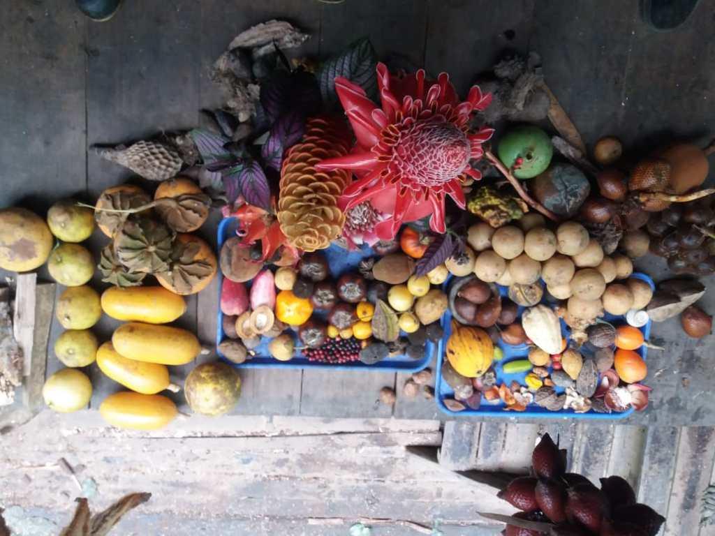 inicio pdc curso de diseño en permacultura ecuador frutas guaycuyacu