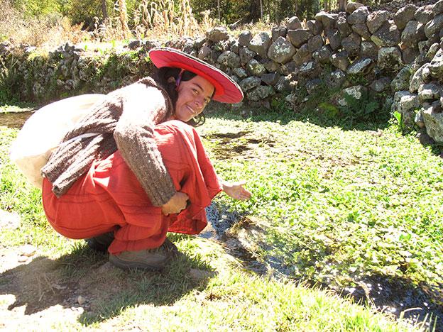 Berros Red de Guardianes de Semillas ecuador orgánico permacultura