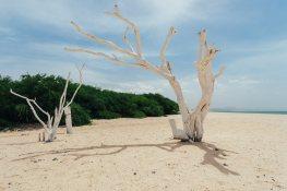 Buccaneers Beach