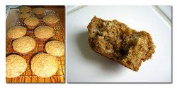 Muffincomp