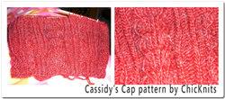 Casscap1