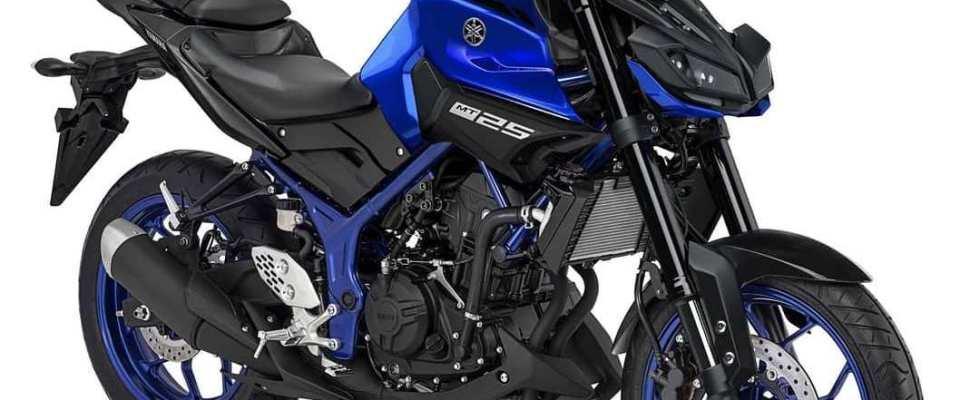 All New Yamaha MT25