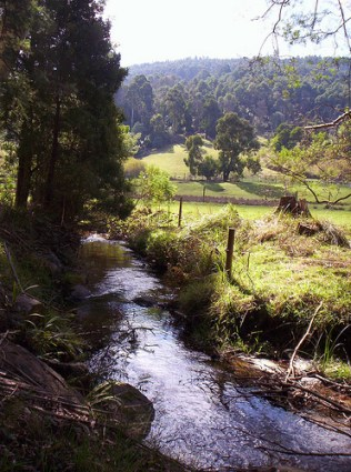 The little yarra river near Ixchel farm