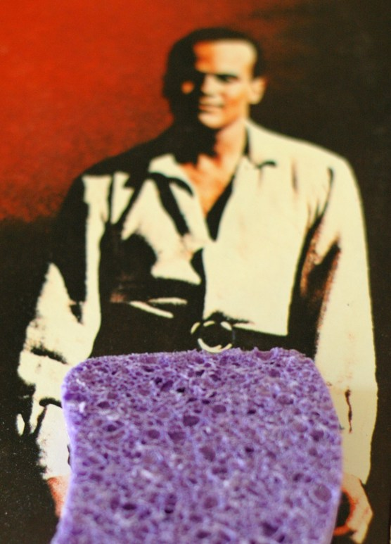 The best sponge ever?