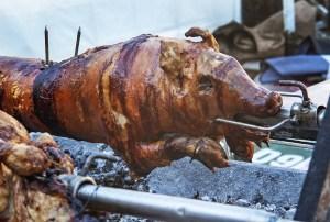 suckling pig, pig roast, rotisserie-3869602.jpg