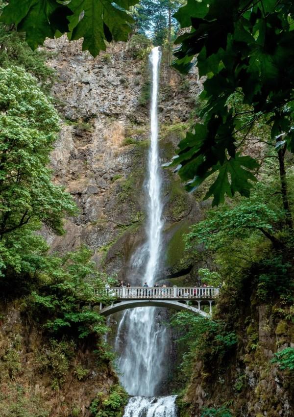 Top 10 Oregon Waterfall Hikes