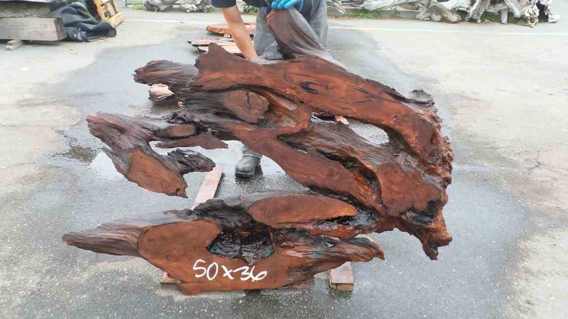 Raw Wood Wall Art - Redwood Burl Driftwood Artpiece