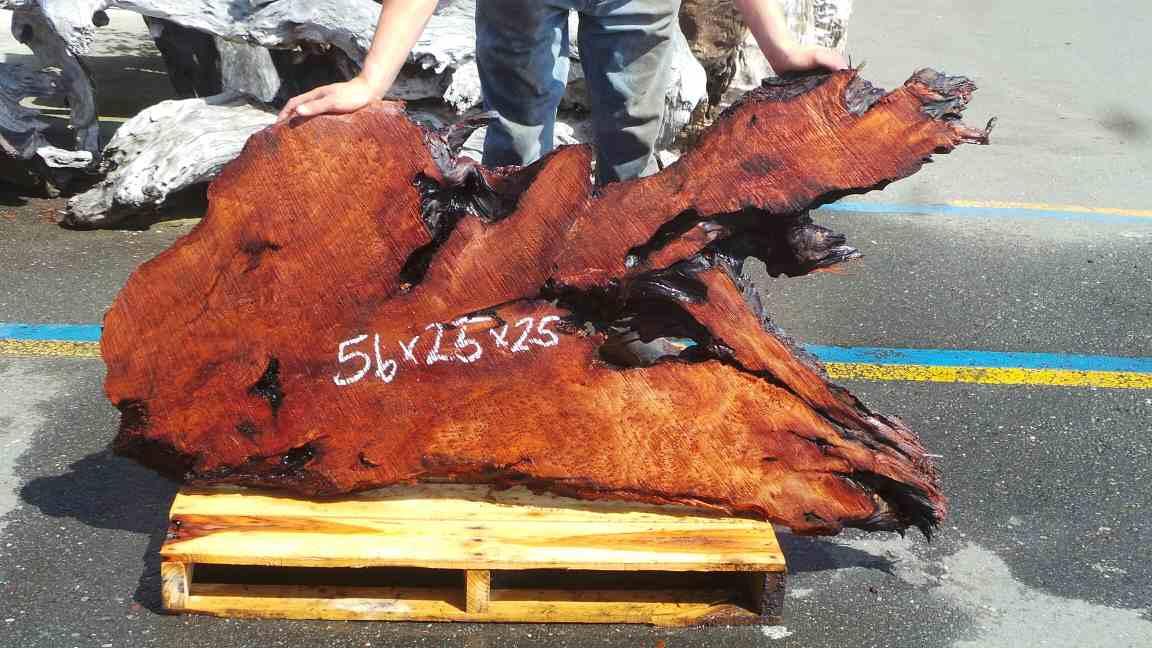 California Burl Wood Slab - Redwood Burl Slab for Headboard or Wall Art