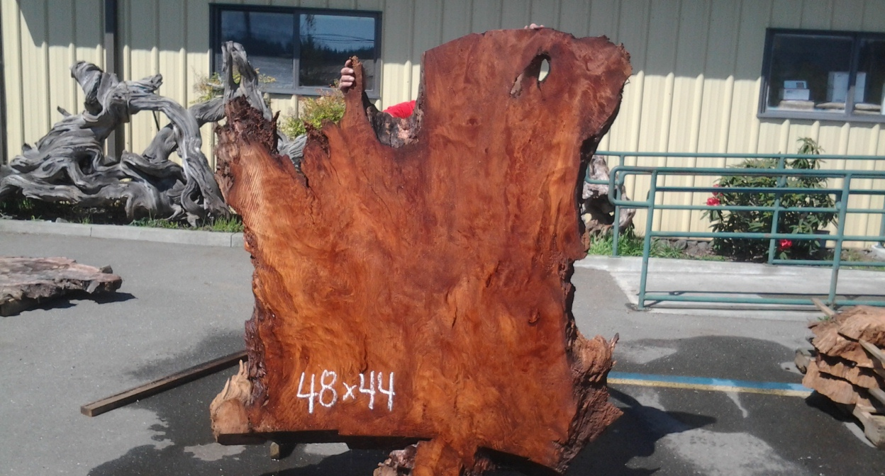 Burl Slab | Redwood Burl Wood Slabs