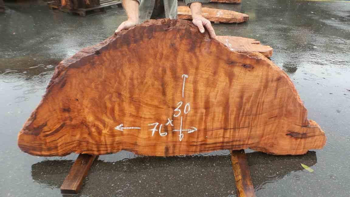 Curly Wood Slab - Desk Slab