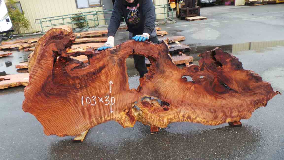 Burl wood art piece or headboard - curly, highly figured redwood