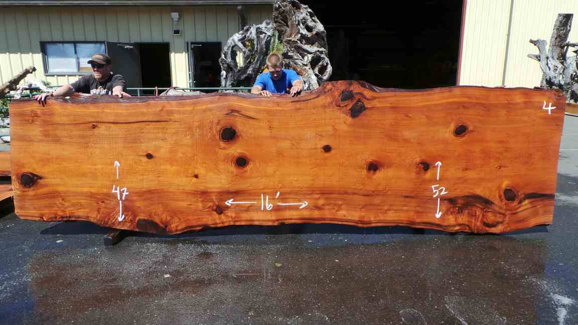 Old growth rare redwood burl table slab with knots