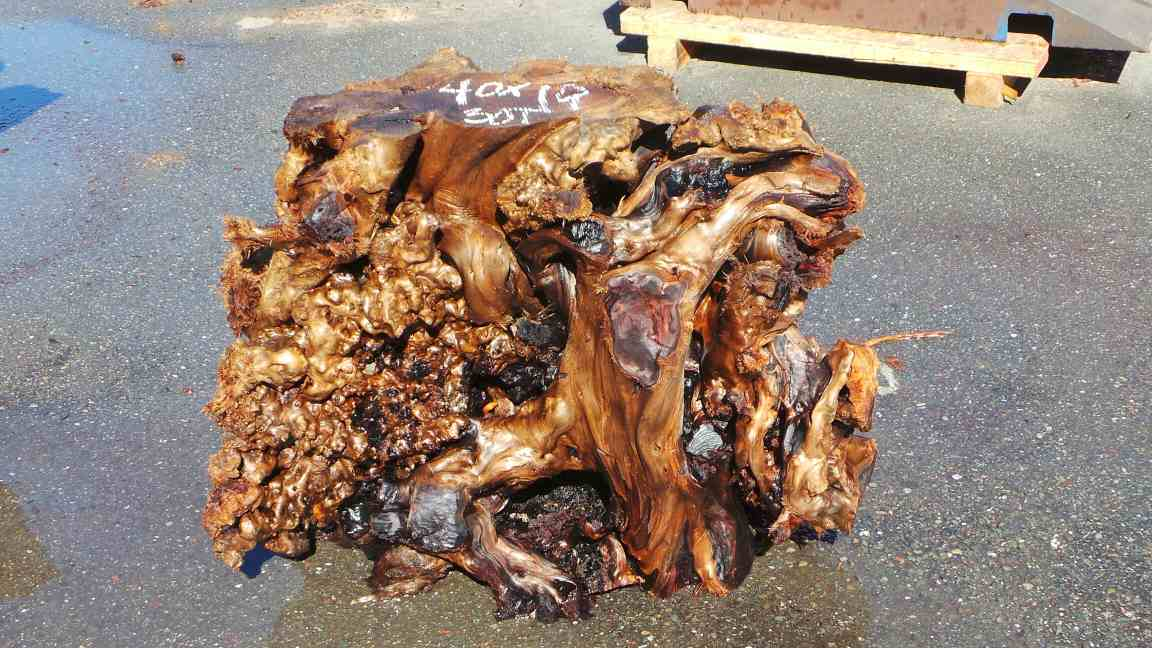Redwood Slab Table Base Option - Redwood Roots and Gnarls