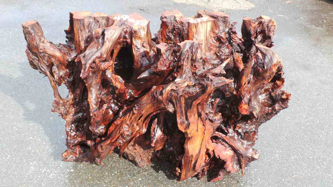 Crazy Real Redwood Wood Roots Glass Table Base Branches