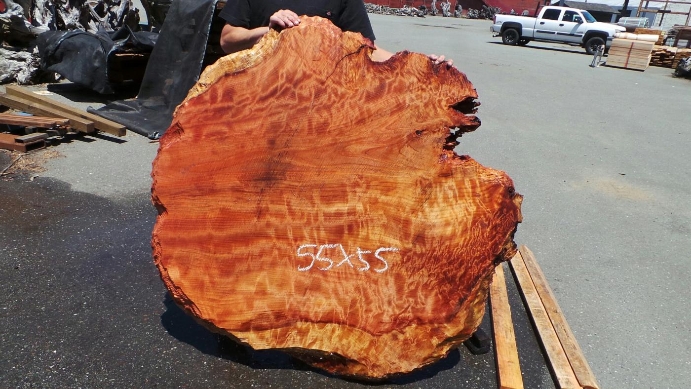 Redwood Burl Slab