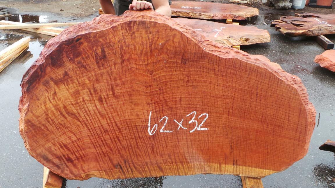 Live edge tree slab