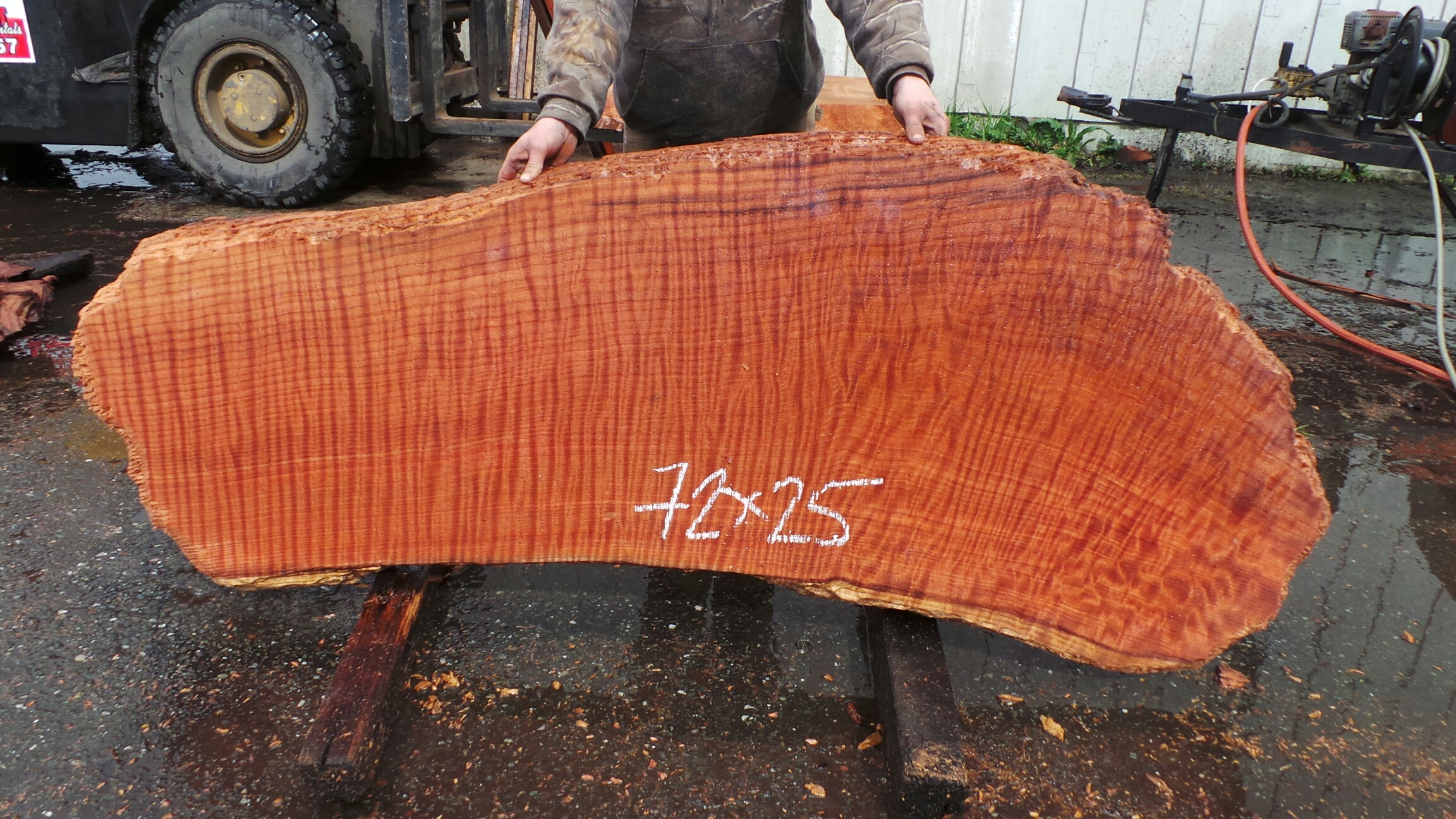 Curly Grain Redwood Burl Slab