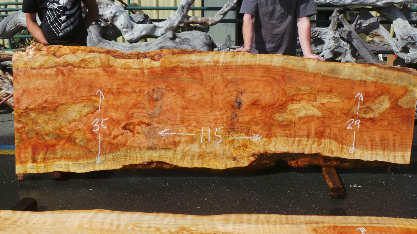 Wood slab kitchen countertop