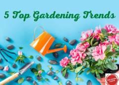 5 Top Gardening Trends