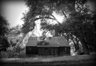 San Diego Ranch Barn