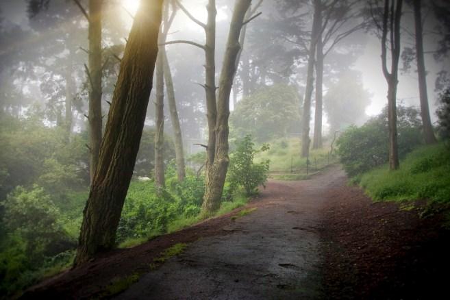 Golden Gate Heights Park