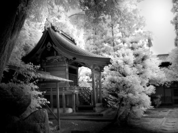 Little Temple (Digital Infrared)
