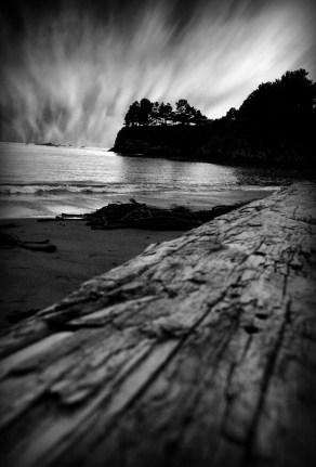Mendocino Cove Log