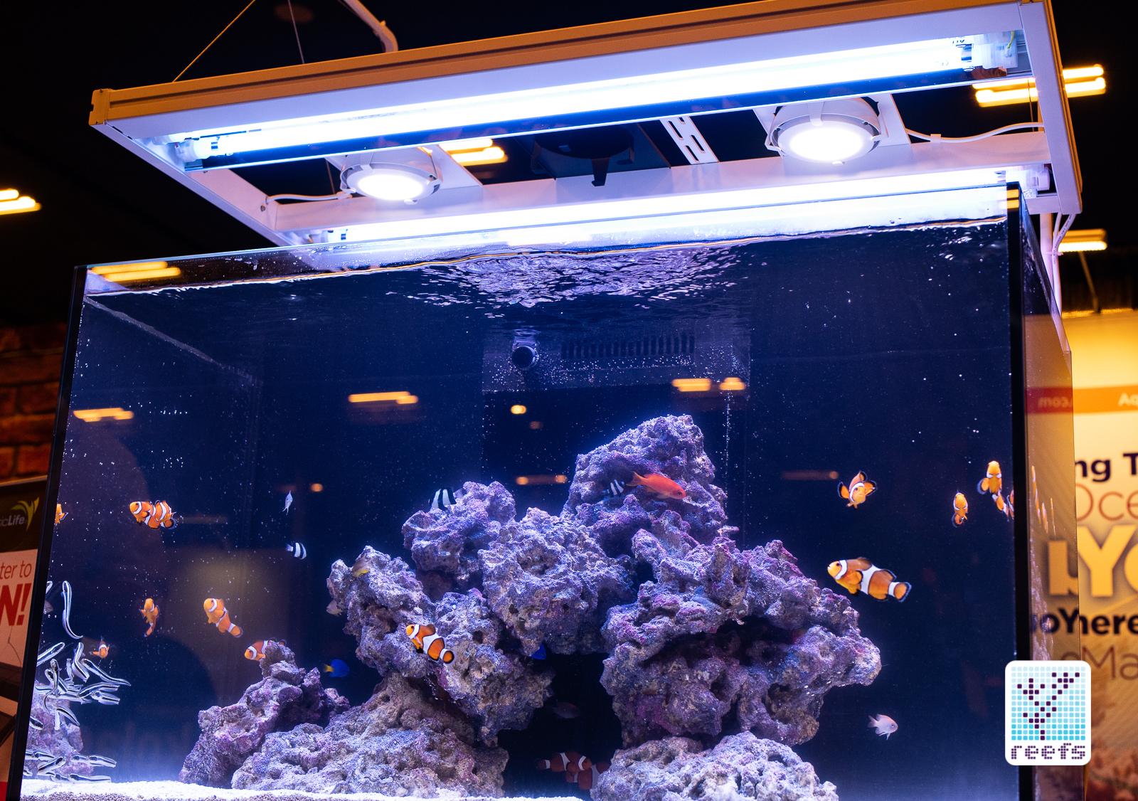 aquaticlife t5 hybrid light fixture the definitive review