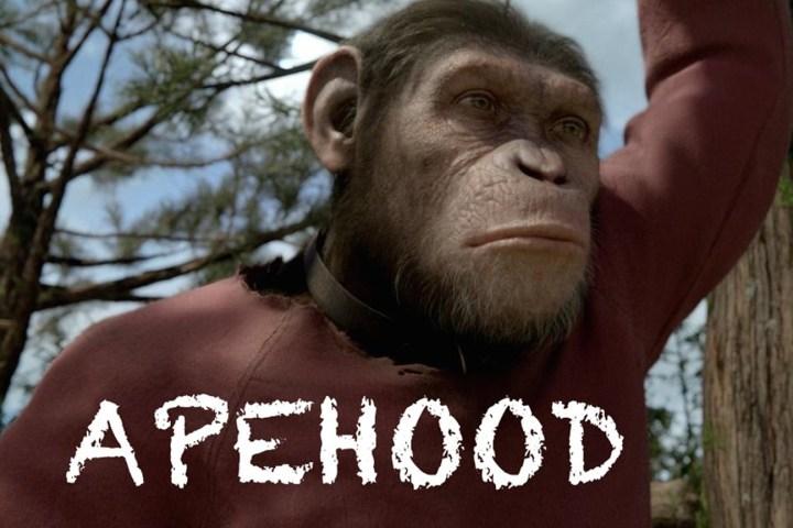 "Carvajal's hybrid ""Apehood"" video gets Webby nod"