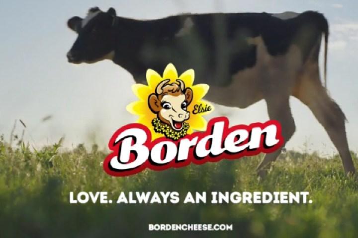 Martha Stewart part of new VSA/Borden® Cheese campaign