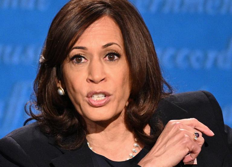 Kamala Harris swats last night's debate