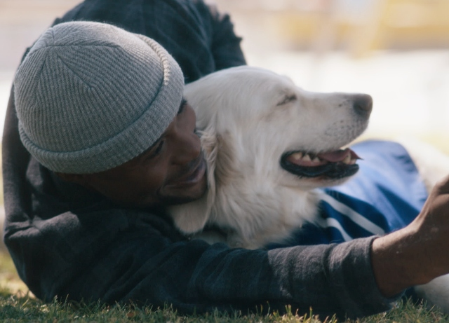 Allianz: Introduces Dog Squad for Olympics