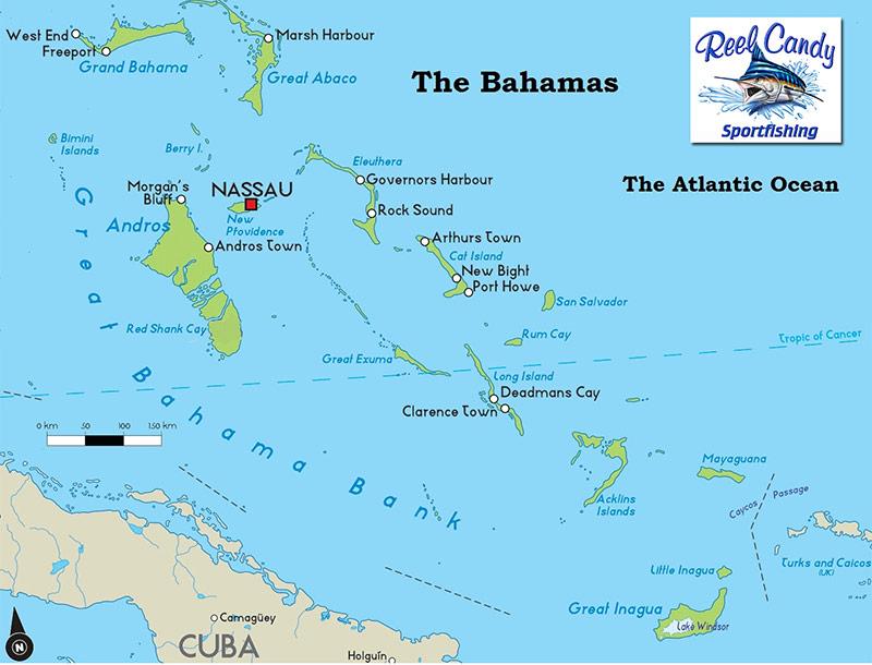 Sportfishing Jupiter Stuart Palm Beach Amp The Bahamas
