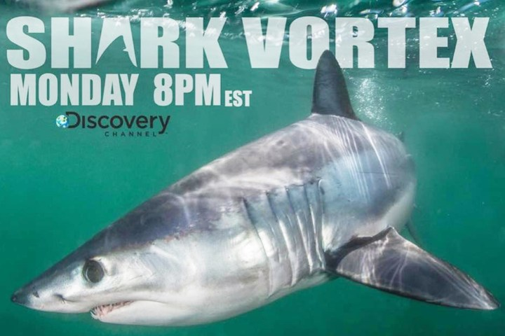 CRC's Bill Fisher dives under the sea for Shark Week