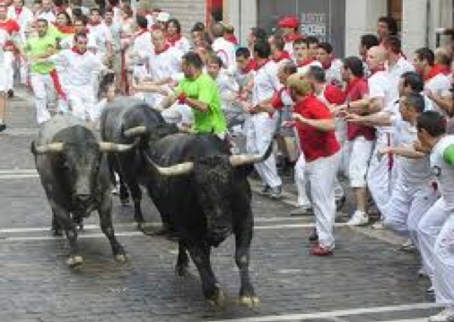 "Questar's ""Running of the Bulls"" DVD the real things"