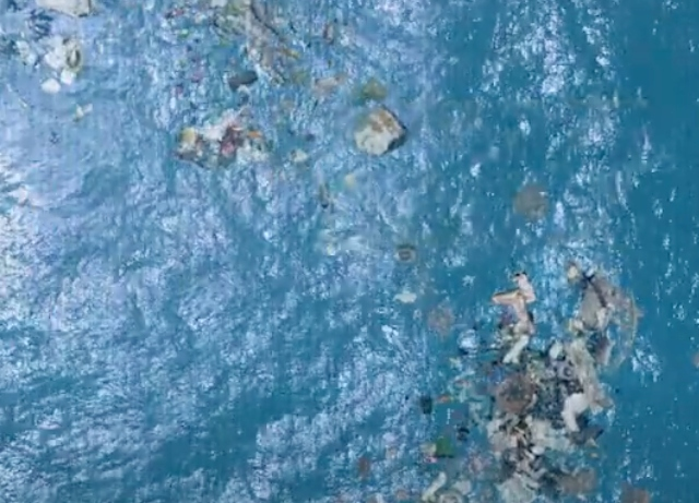 Havas, Moen hold NFT Auction to support oceans