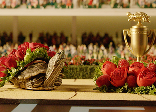 Old Forester's Kentucky Turtle Derby is back